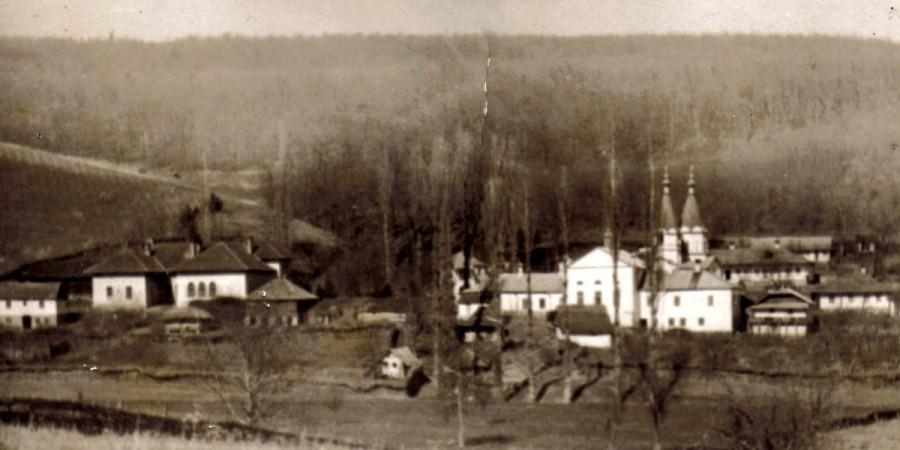 foto de peste iazul mănăstirii-2