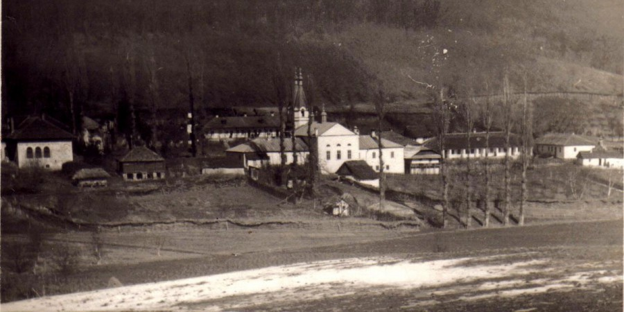 foto de peste iazul mănăstirii-1